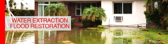 Water Extraction / Flood Restoration